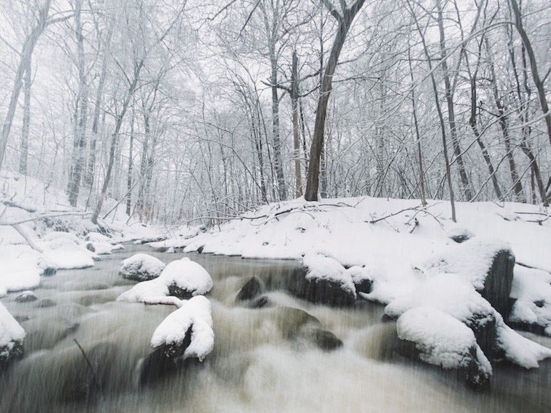 Snowfall along a running creek in a forest covered in snow.