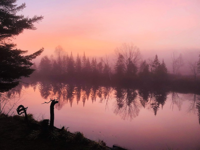 A view of a lake with mist during sunrise and evergreen trees.