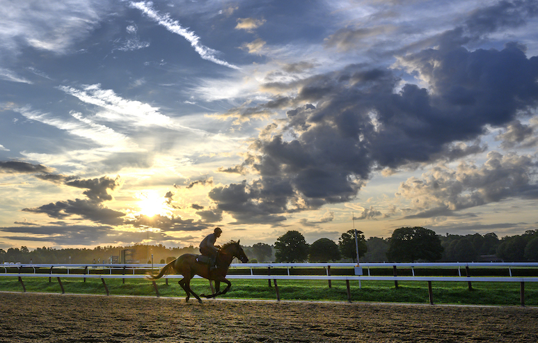 Racehorse with rider on track at sunrise