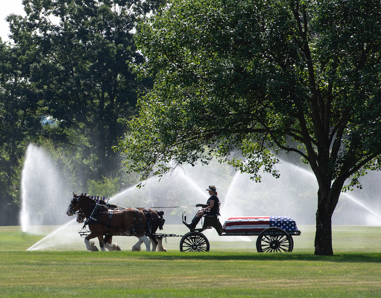 A horse-drawn wagon carrying a casket draped in an American flag in a field, with sprinklers running in the background